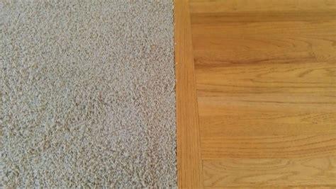 Carpet vs Hard floors: Which is easier to maintain?   All