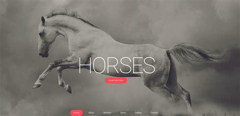 Most Beautiful Web Templates