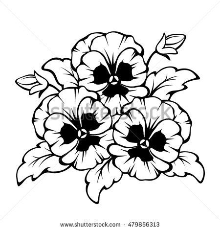 viola flower drawing www pixshark com images galleries