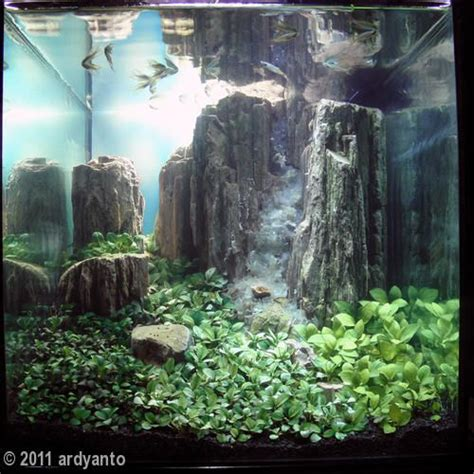 waterfall aquascape gardens beautiful and underwater on pinterest