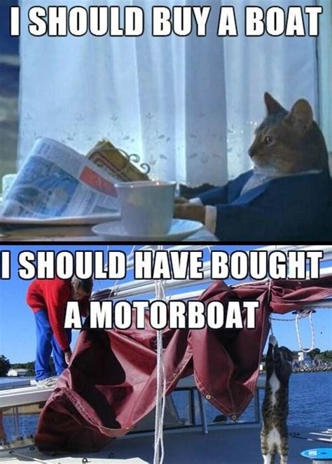 I Should Buy A Boat Cat Meme - i m starting to regret this decision i should buy a boat