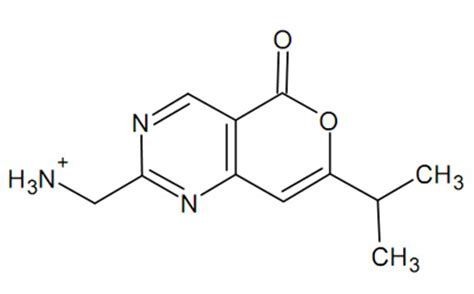 Molecule Drawer sketch of the molecule h2o coloring pages