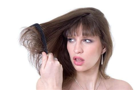 sollutions to dry limp hair hair care tips for dry and frizzy hair