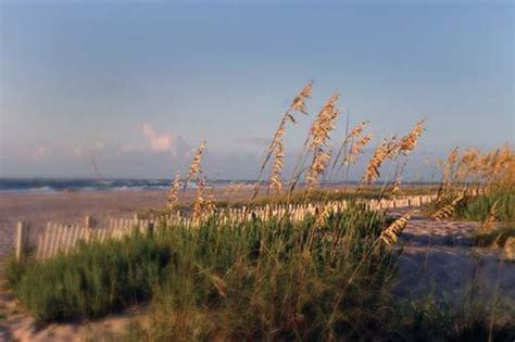 The Hammocks Bald Island the hammocks on bald island timeshare resale and rental protimeshareresales