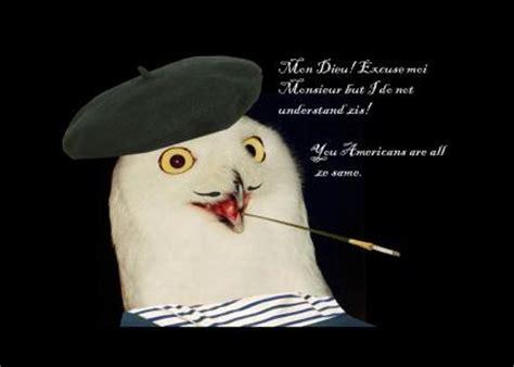 Orly Meme - pin rly owl wallpaper meme wallpapers 8814 on pinterest