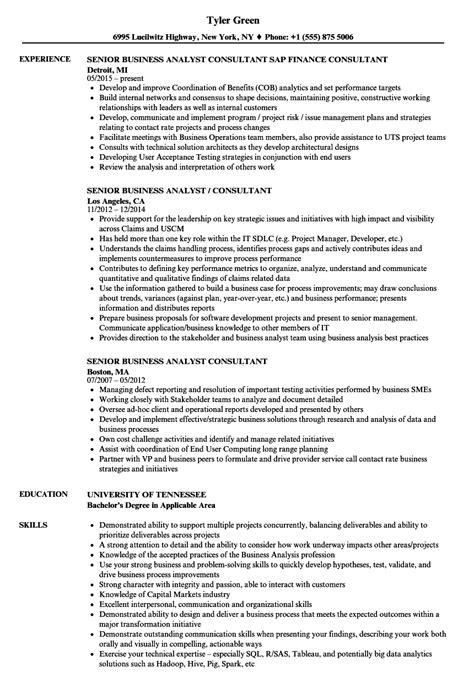 senior business analyst consultant resume sles velvet