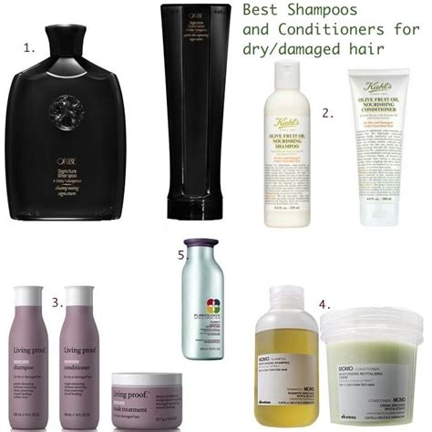what is the best shoo for dry hair 2013 best shoo and conditioner for damaged hair pinterest the