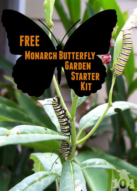 How To Make A Butterfly Garden by 214 Best Landscaping Ideas Images On