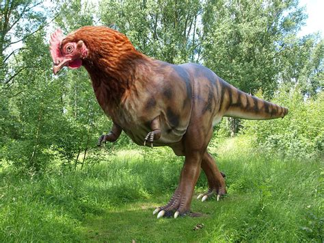 images of dinosaurs dinosaur wallpapers humor hq dinosaur pictures 4k