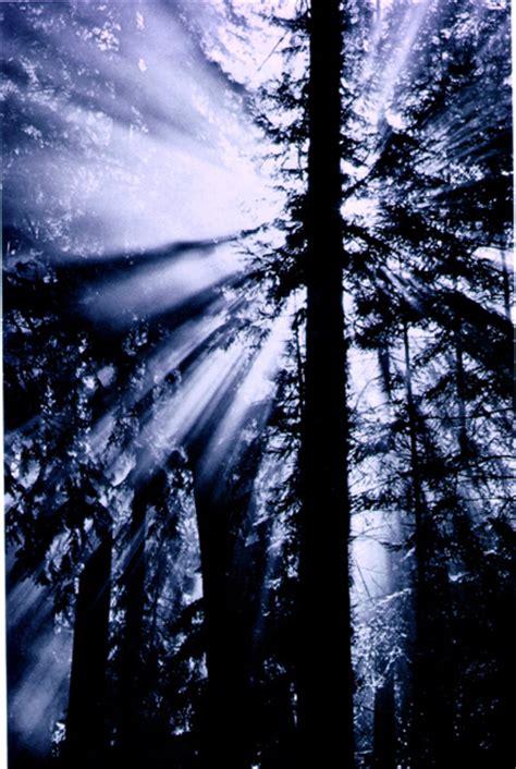 Redwood Lighting by San Francisco Vs Los Angeles San Diego San Jose 2014