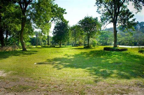imagenes zonas verdes beneficios de las 225 reas verdes parques alegres i a p