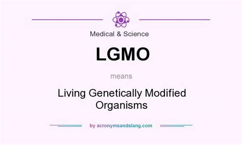 Modified Organism Definition by What Does Lgmo Definition Of Lgmo Lgmo Stands