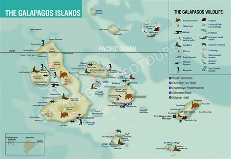 galapagos map expat journal postcards from the edge international travel journals