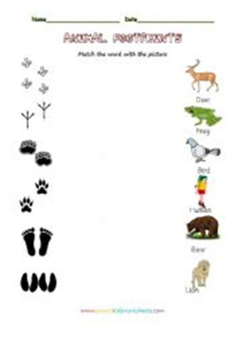 printable animal footprint matching game english worksheets animal footprints
