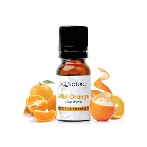 Obral 20 Ml Orange Essential 100 orange essential 10 ml by iqnatural dubai