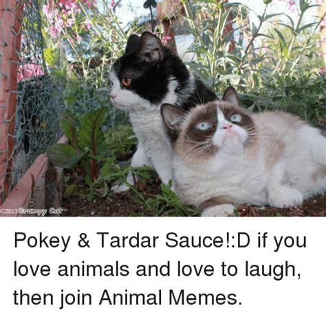 Tardar Sauce Meme - 25 best memes about tardar sauce tardar sauce memes