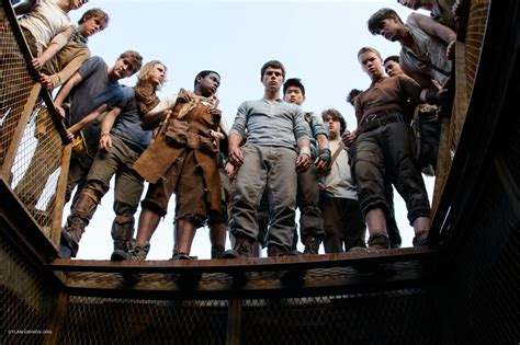 film maze runner review film review the maze runner clairestbearestreviews