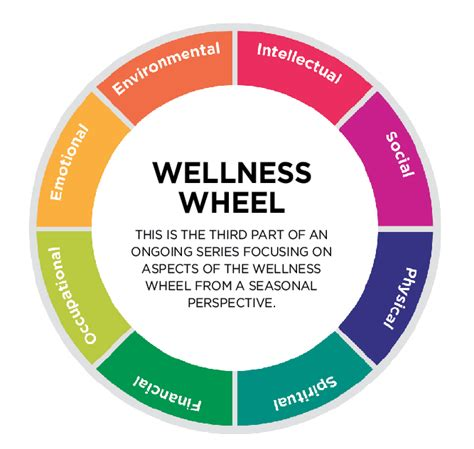 you can do it health wellness and healthy living for those who tried everything else books wellness wheel part 3 balance social and physical