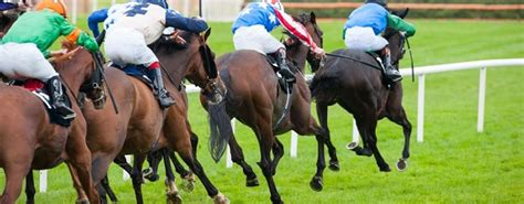 sea  sun leads betbrights quest  tipster challenge glorysea  sun leads betbrights