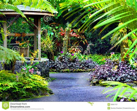 Big Island Botanical Garden Wishing Well Royalty Free Stock Photography Image 35951707