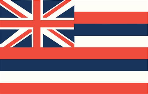 hawaii state flag illustrations royalty  vector