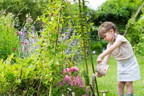 Watering Garden by Summer Is Coming How To Keep Your Garden Plants Looking