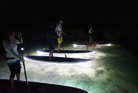 ops paddle board lights nightsup is the coolest illuminated stand up paddleboard