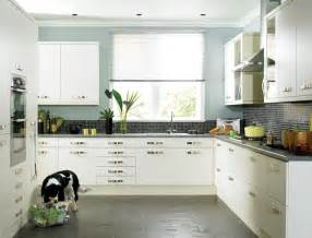 Kitchen Wall Colour Ideas choose better options for designing with kitchen colour ideas kitchens