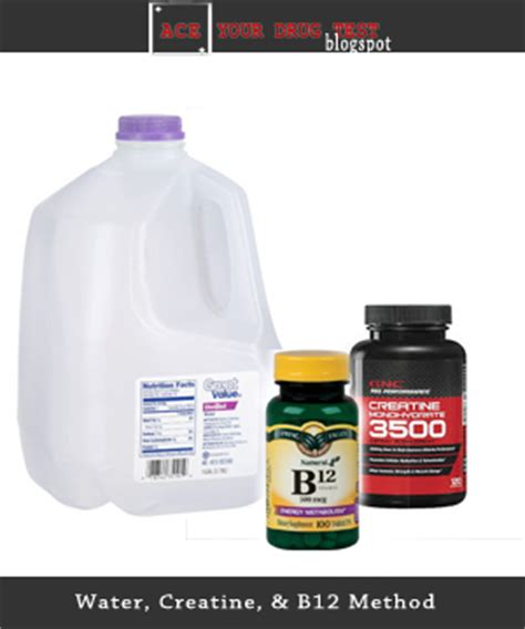 b12 creatine test ace your test