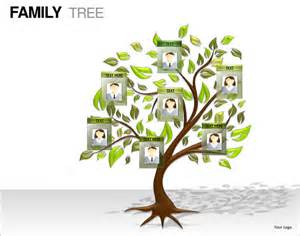 tree template for powerpoint 7 powerpoint family tree templates free premium