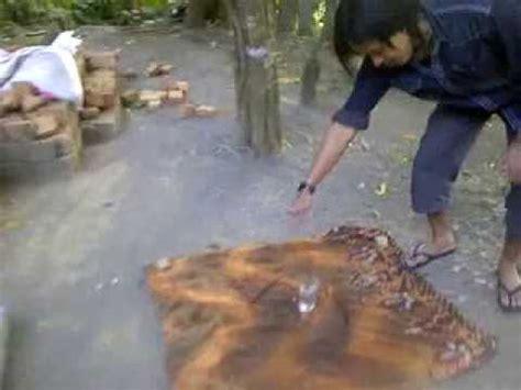 Sisik Naga Jolo Sutro mustika jala emas asli doovi