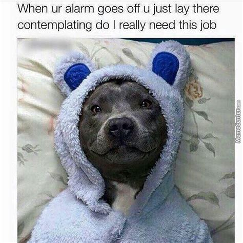goes off when ur alarm goes off by blackin meme center