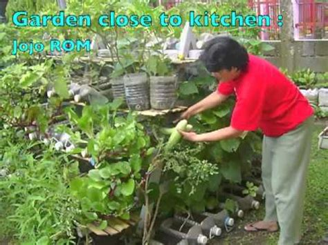 Gardening Vegetables At Home Growing Food In Containers At Home