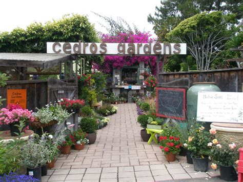 Cedros Gardens earth laughs in flowers san diego premier
