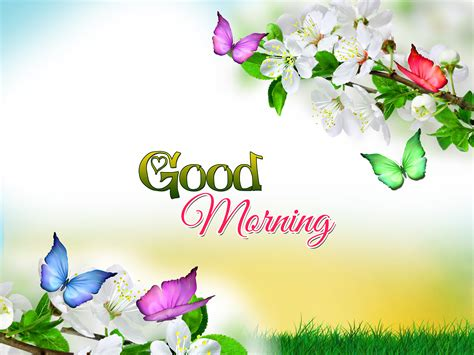 good morning wallpaper picture long wallpapers