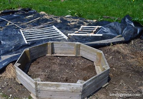 How To Build A Frog Pond In Your Backyard by Building A Wildlife Pond In The Vegetable Garden Garden