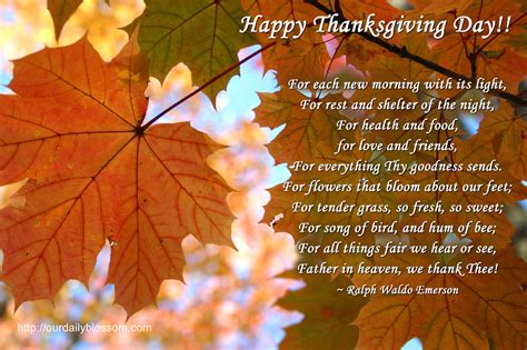 happy thanksgiving day pictures   images