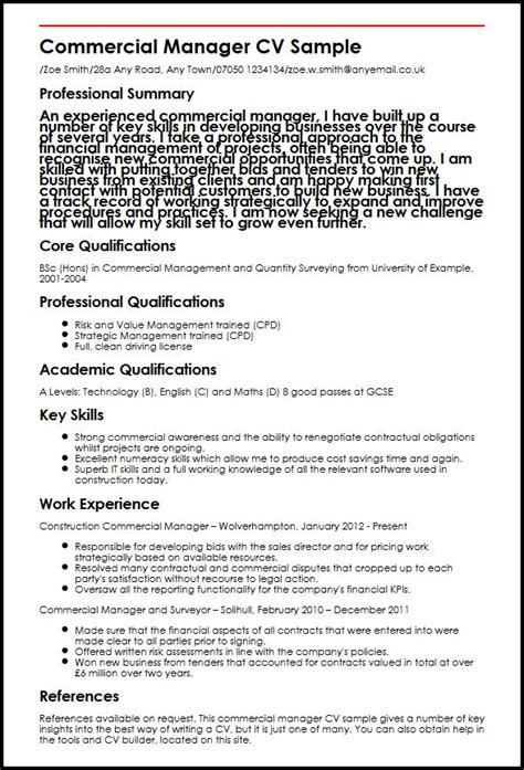 Resume Sle Professional Profile About Yourself Professional Cv Exle Myperfectcv 28 Images Sle Professional Profile About Yourself Simple