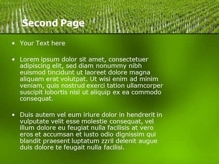 ppt templates for rice rice paddies powerpoint template backgrounds 05325
