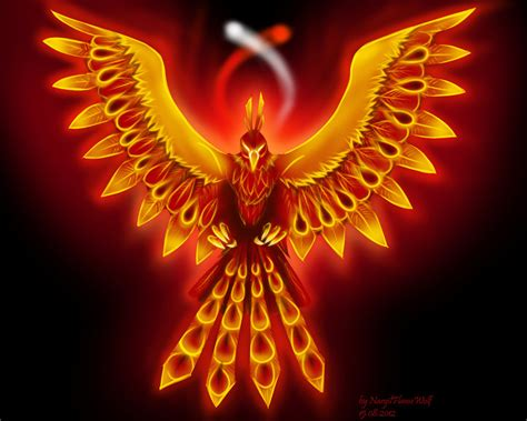 flaming bird by nargilflamewolf on deviantart