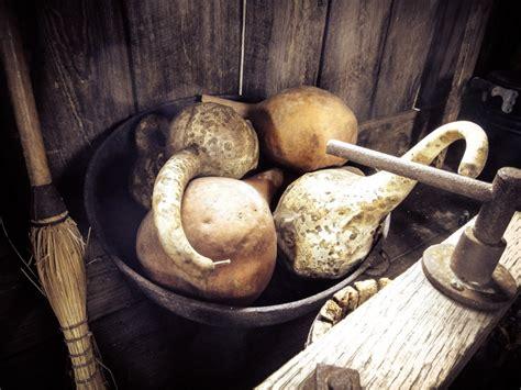 it s decorative gourd season 28 images it s decorative