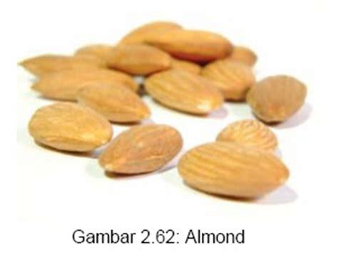 Minyak Kacang Almond buah kacang kacangan dan manisan belajar serbaneka
