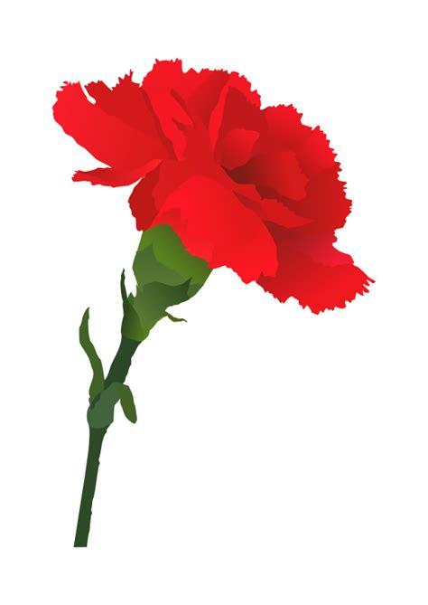 Carnation Clipart free carnation flower clip