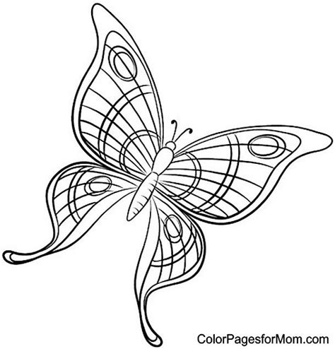 mosaic butterfly coloring pages butterfly coloring page 49 butterflies to color pinterest