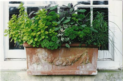 How To Plant Herbs In Planter Boxes by Why Garden In The Cotswolds