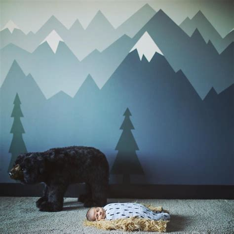 mountain wall murals let him sleep for when he wakes he will move