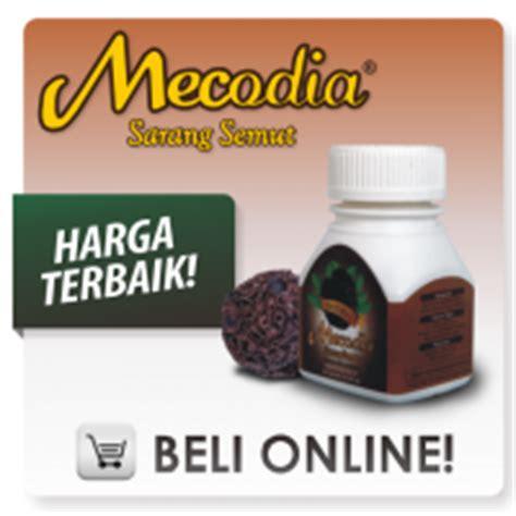 Obat Herbal Sarang Semut Papua jual obat sarang semut papua bogor iklan baris gratis
