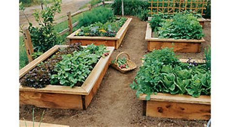 herb gardening gardening tractor supply