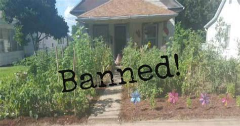 Backyard Gardens Illegal by Charged With A Crime And Fined For Growing A Vegetable