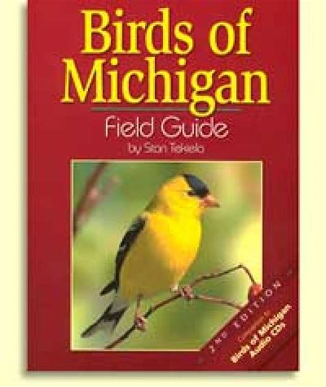 birds of michigan field guide ionia conservation district